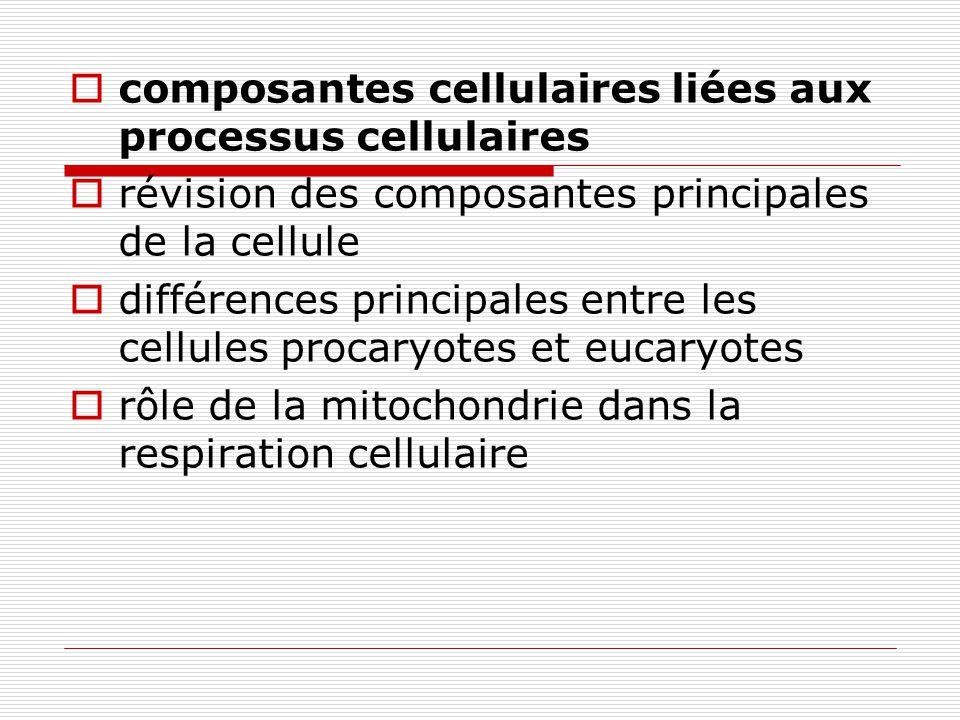Enzymes et leurs fonctions enzymes : catalyseurs spécificité des enzymes cycle catalytique des enzymes cycle enzymatique : énergie dactivation, site actif, substrat, complexe enzyme-substrat (ajustement induit), produit.
