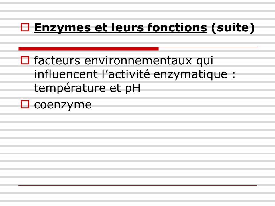 Enzymes et leurs fonctions (suite) facteurs environnementaux qui influencent lactivité enzymatique : température et pH coenzyme