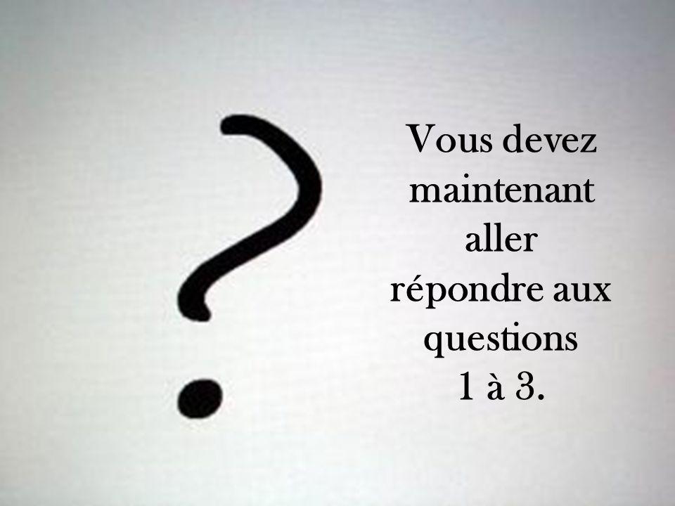 Vous devez maintenant aller répondre aux questions 1 à 3.