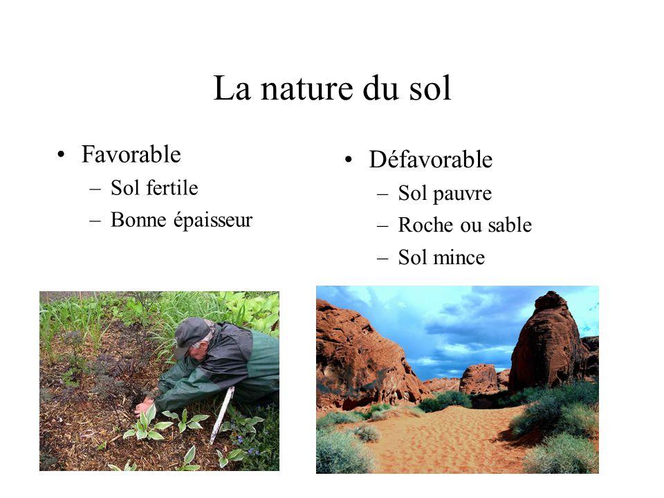 La nature du sol Favorable –Sol fertile –Bonne épaisseur Défavorable –Sol pauvre –Roche ou sable –Sol mince