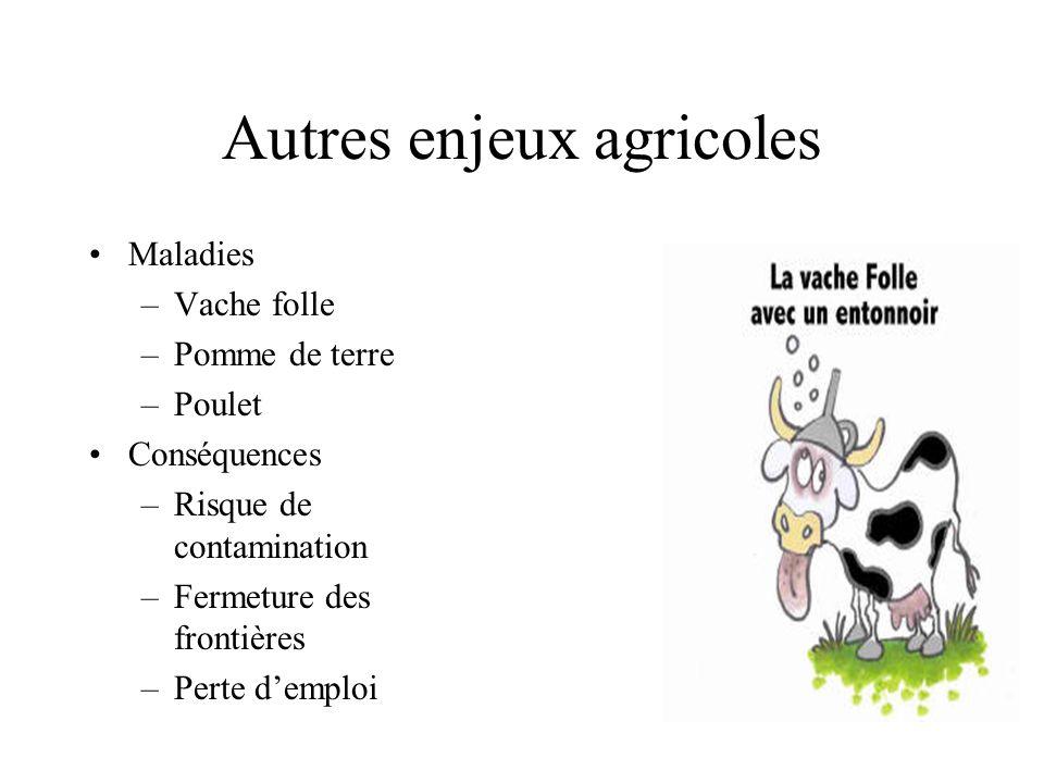 Autres enjeux agricoles Maladies –Vache folle –Pomme de terre –Poulet Conséquences –Risque de contamination –Fermeture des frontières –Perte demploi