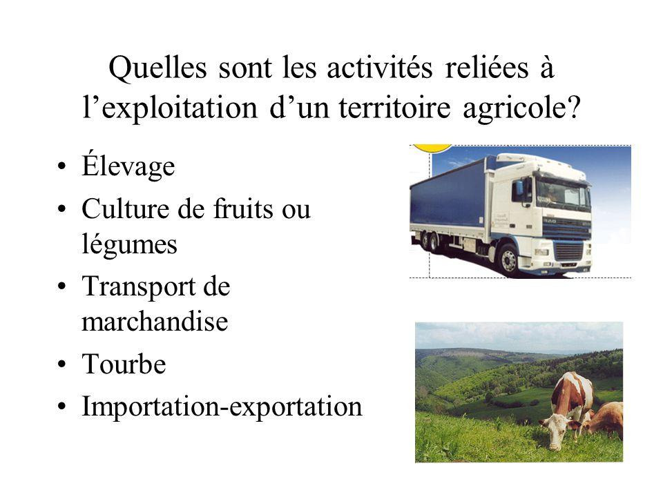 Quelles sont les activités reliées à lexploitation dun territoire agricole? Élevage Culture de fruits ou légumes Transport de marchandise Tourbe Impor