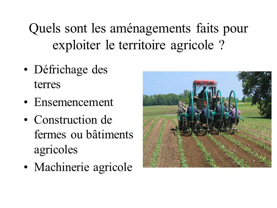 Quels sont les aménagements faits pour exploiter le territoire agricole ? Défrichage des terres Ensemencement Construction de fermes ou bâtiments agri