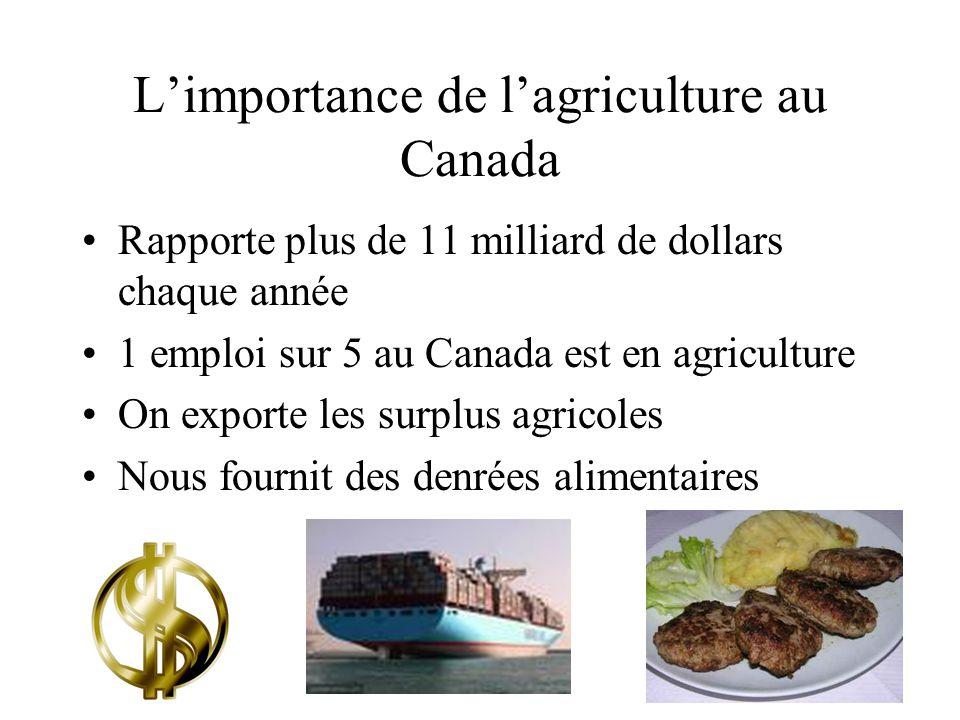Limportance de lagriculture au Canada Rapporte plus de 11 milliard de dollars chaque année 1 emploi sur 5 au Canada est en agriculture On exporte les