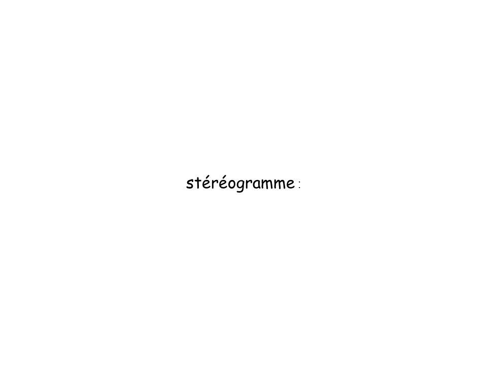 stéréogramme :