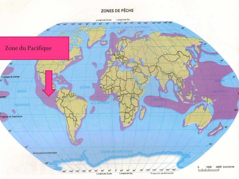 Zone du Pacifique