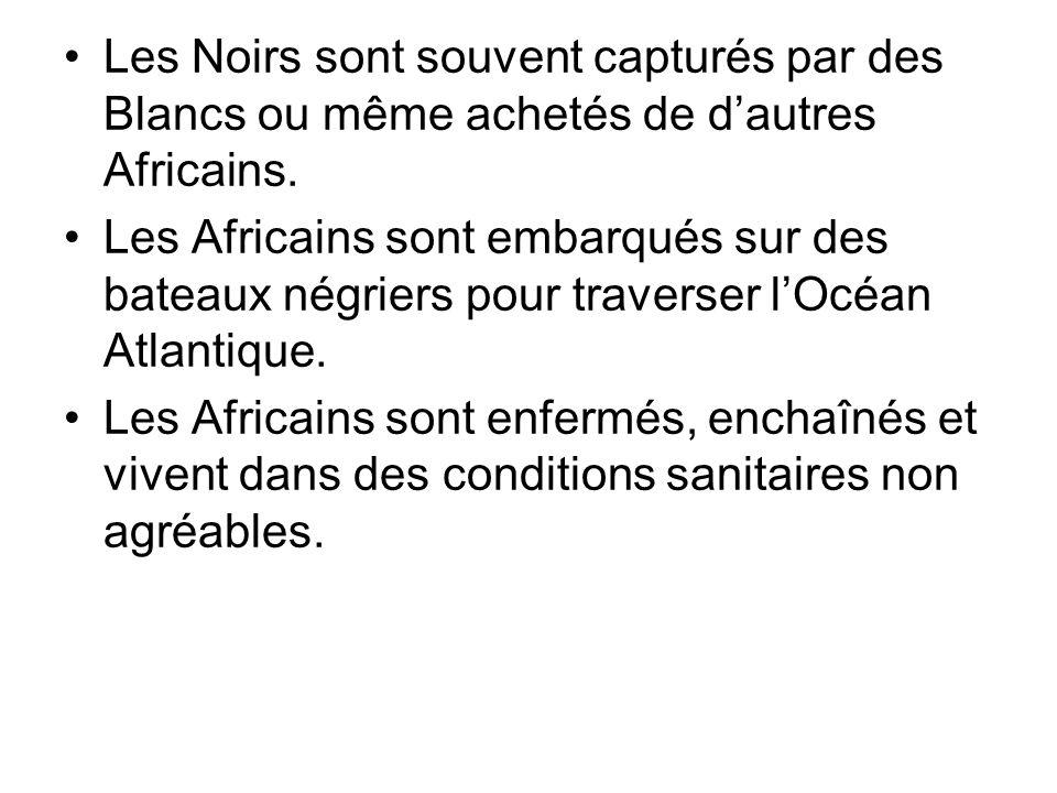 Les Noirs sont souvent capturés par des Blancs ou même achetés de dautres Africains. Les Africains sont embarqués sur des bateaux négriers pour traver