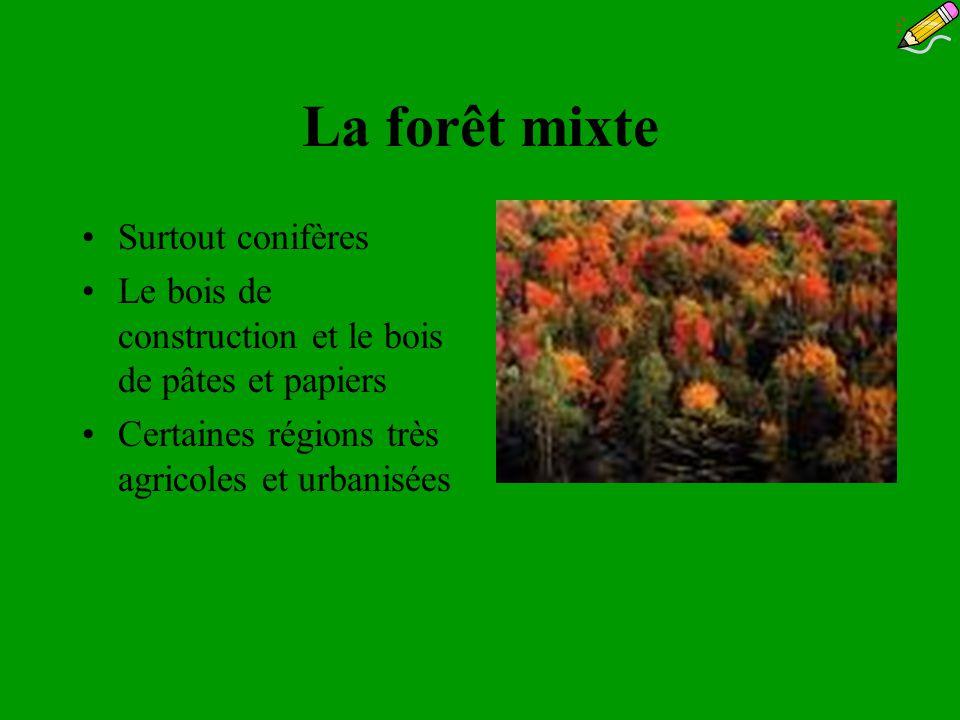 La forêt mixte Surtout conifères Le bois de construction et le bois de pâtes et papiers Certaines régions très agricoles et urbanisées