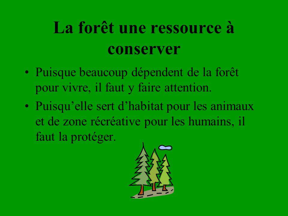 La forêt une ressource à conserver Puisque beaucoup dépendent de la forêt pour vivre, il faut y faire attention. Puisquelle sert dhabitat pour les ani