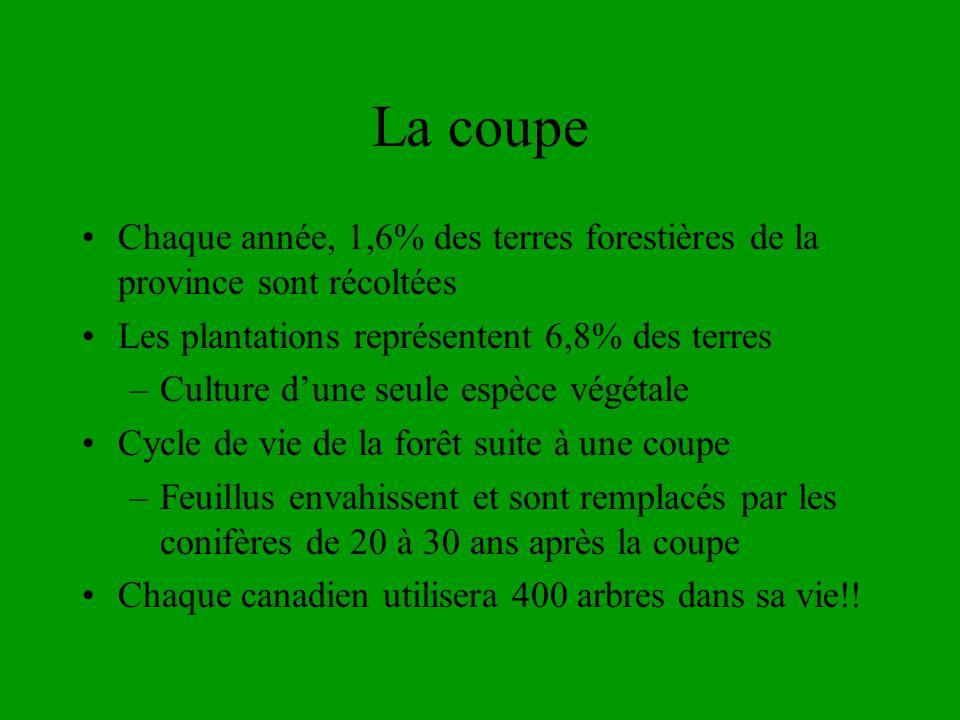 La coupe Chaque année, 1,6% des terres forestières de la province sont récoltées Les plantations représentent 6,8% des terres –Culture dune seule espè