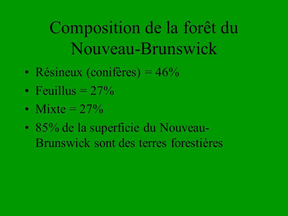 Composition de la forêt du Nouveau-Brunswick Résineux (conifères) = 46% Feuillus = 27% Mixte = 27% 85% de la superficie du Nouveau- Brunswick sont des