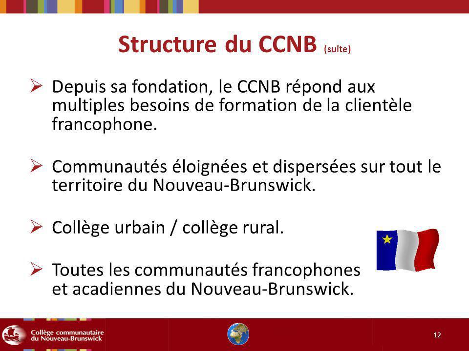 Structure du CCNB (suite) 12 Depuis sa fondation, le CCNB répond aux multiples besoins de formation de la clientèle francophone. Communautés éloignées