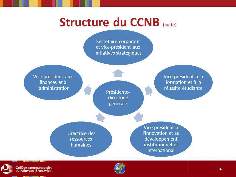 Structure du CCNB (suite) 16 Présidente- directrice générale Secrétaire corporatif et vice-président aux initiatives stratégiques Vice-président à la