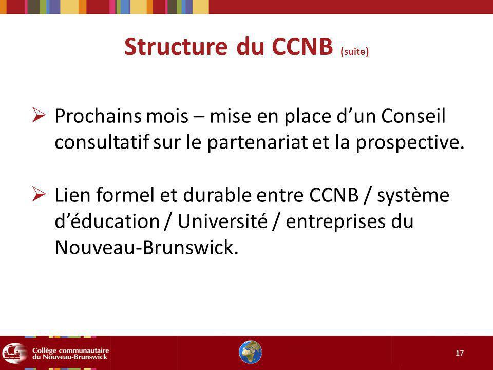 Structure du CCNB (suite) 17 Prochains mois – mise en place dun Conseil consultatif sur le partenariat et la prospective. Lien formel et durable entre