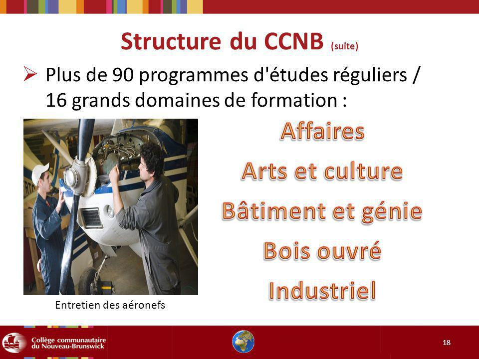 Structure du CCNB (suite) 18 Plus de 90 programmes d études réguliers / 16 grands domaines de formation : Entretien des aéronefs