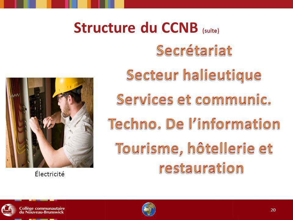 Structure du CCNB (suite) 20 Électricité