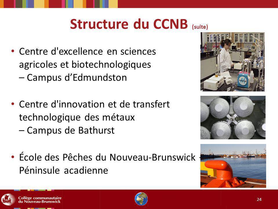 Structure du CCNB (suite) 24 Centre d excellence en sciences agricoles et biotechnologiques – Campus dEdmundston Centre d innovation et de transfert technologique des métaux – Campus de Bathurst École des Pêches du Nouveau-Brunswick – Campus de la Péninsule acadienne