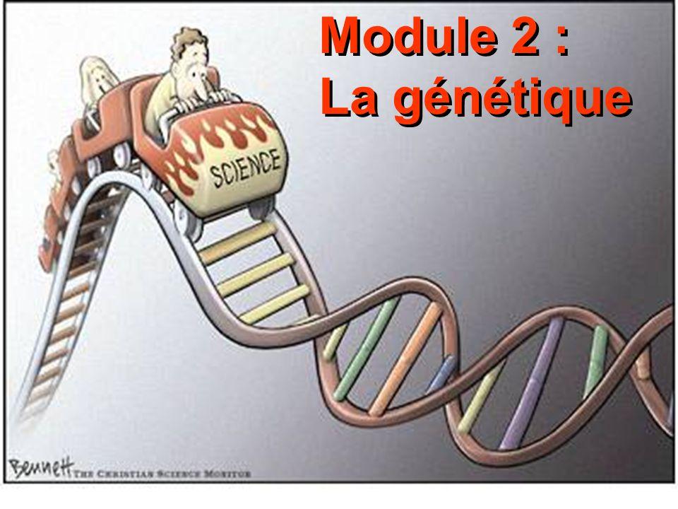 Module 2 : La génétique Module 2 : La génétique