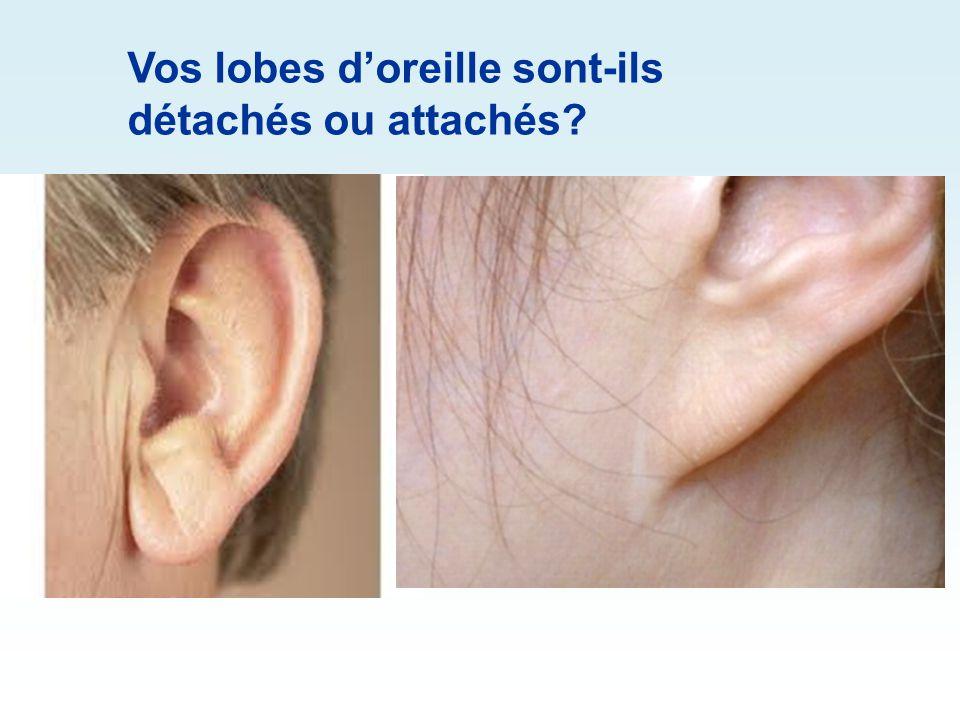Avez-vous un point de Darwin sur les oreilles?