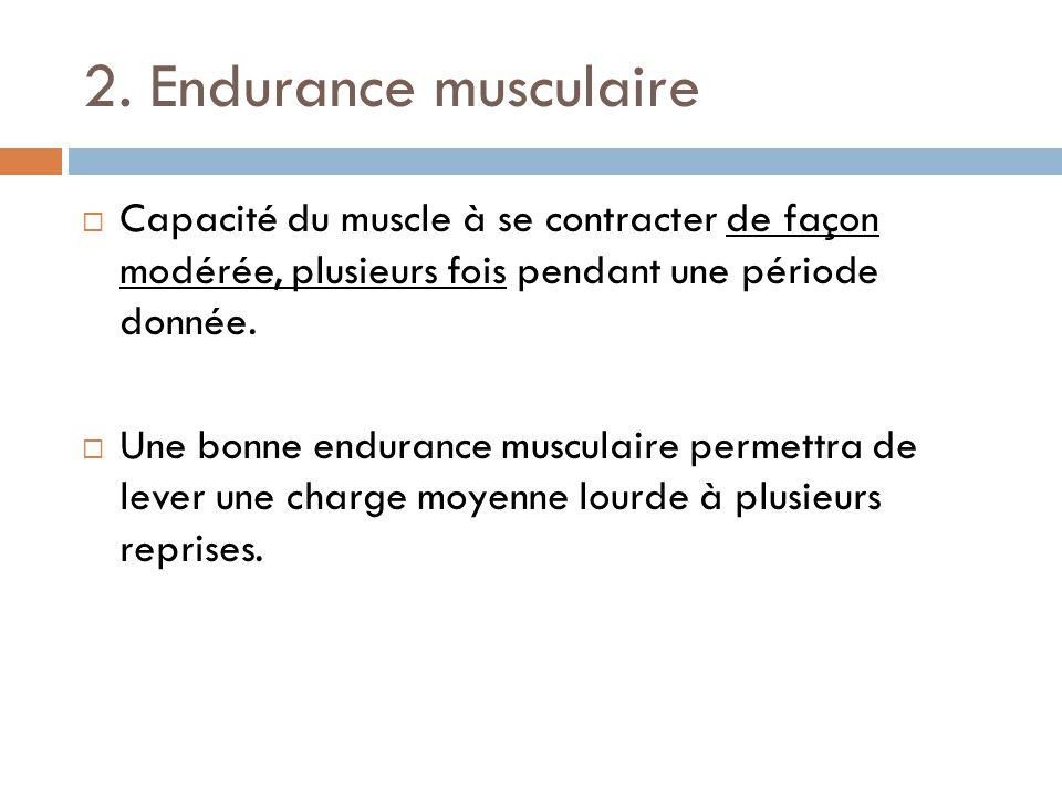 2. Endurance musculaire Capacité du muscle à se contracter de façon modérée, plusieurs fois pendant une période donnée. Une bonne endurance musculaire