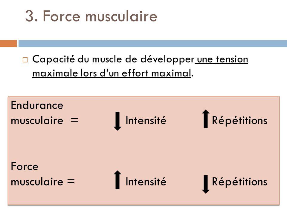 3. Force musculaire Capacité du muscle de développer une tension maximale lors dun effort maximal. Endurance musculaire = Intensité Répétitions Force