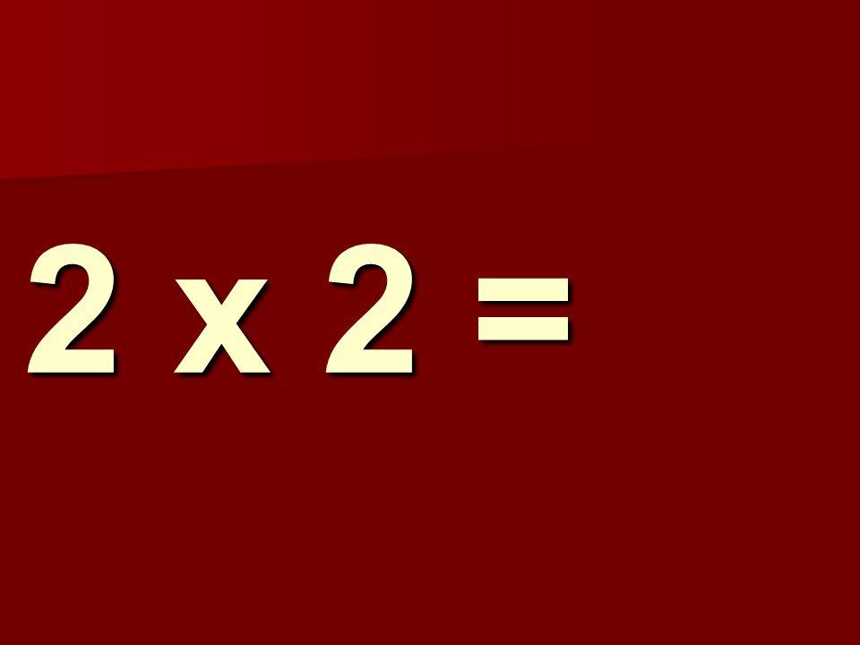 2 x 2 =