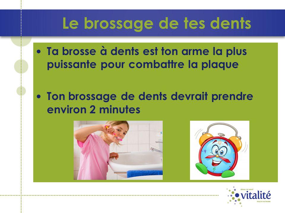 Le brossage de tes dents Ta brosse à dents est ton arme la plus puissante pour combattre la plaque Ton brossage de dents devrait prendre environ 2 min