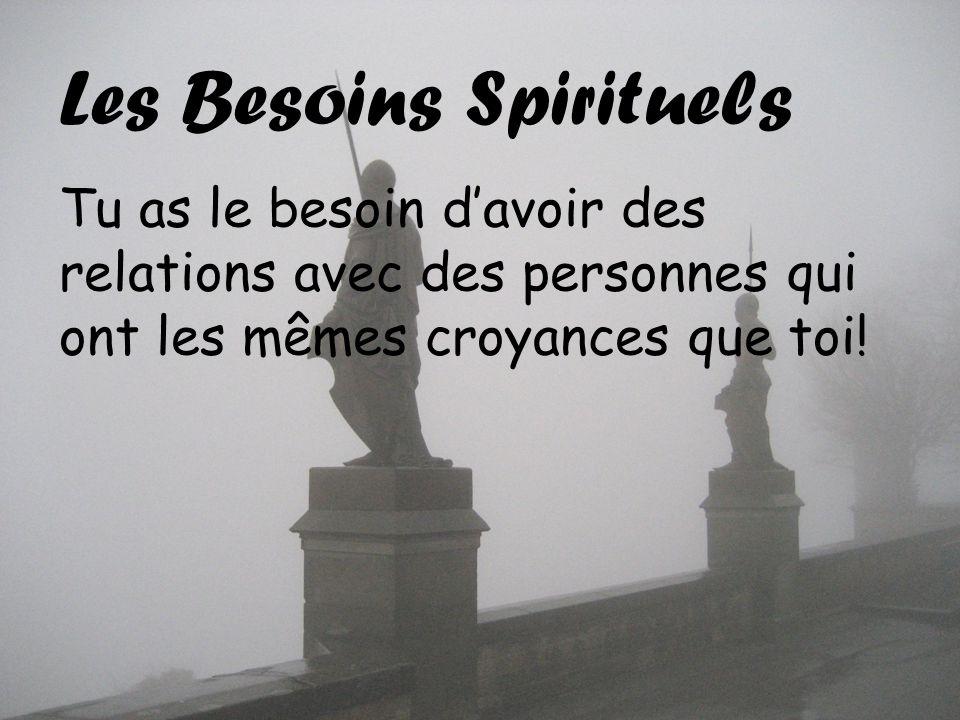 Les Besoins Spirituels Tu as le besoin davoir des relations avec des personnes qui ont les mêmes croyances que toi!