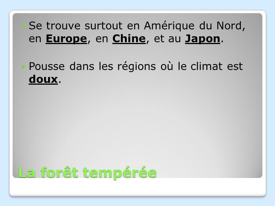 La forêt tempérée Se trouve surtout en Amérique du Nord, en Europe, en Chine, et au Japon.