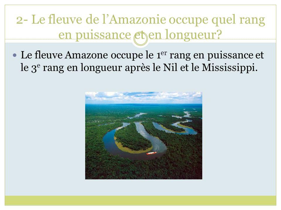 2- Le fleuve de lAmazonie occupe quel rang en puissance et en longueur? Le fleuve Amazone occupe le 1 er rang en puissance et le 3 e rang en longueur