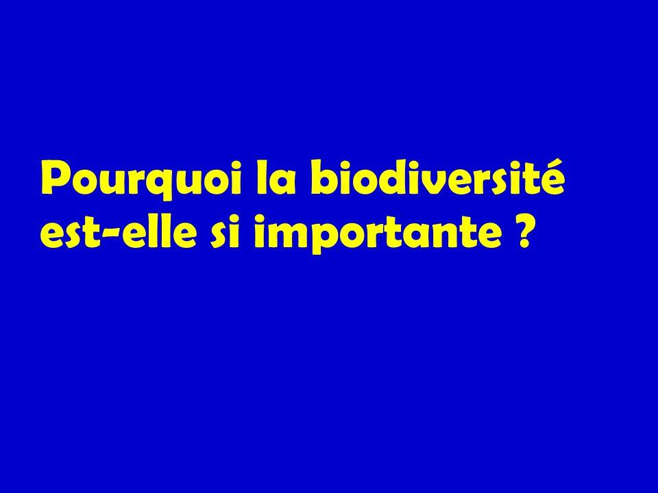 Pourquoi la biodiversité est-elle si importante ?