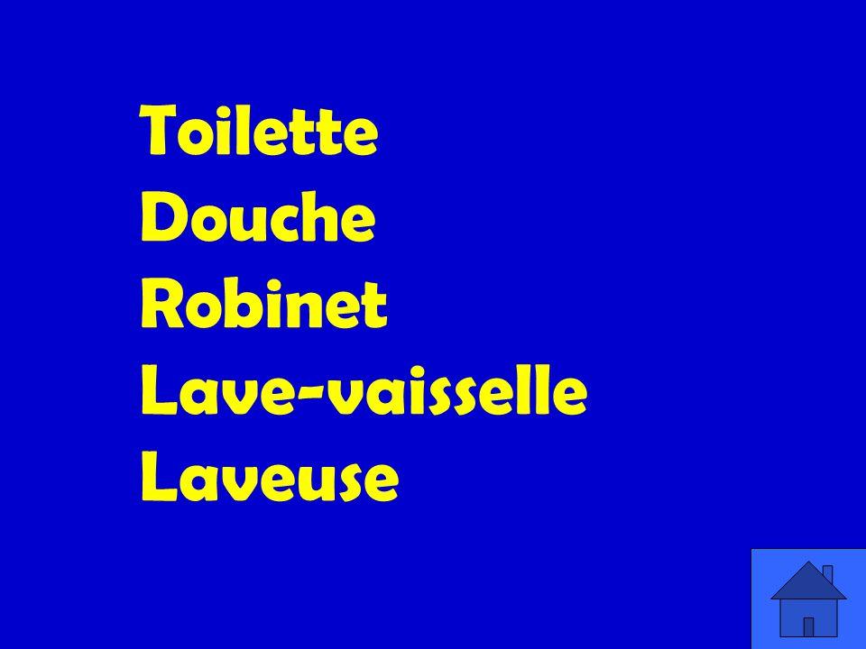 Toilette Douche Robinet Lave-vaisselle Laveuse
