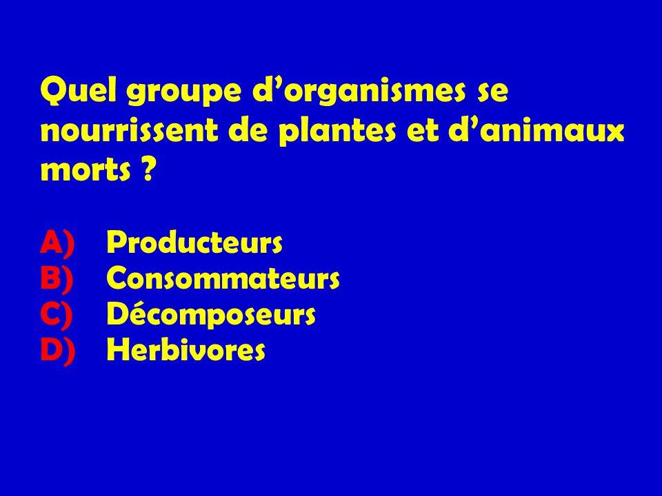 Quel groupe dorganismes se nourrissent de plantes et danimaux morts ? A) Producteurs B) Consommateurs C) Décomposeurs D) Herbivores