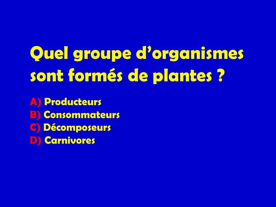 Quel groupe dorganismes sont formés de plantes ? A) Producteurs B) Consommateurs C) Décomposeurs D) Carnivores
