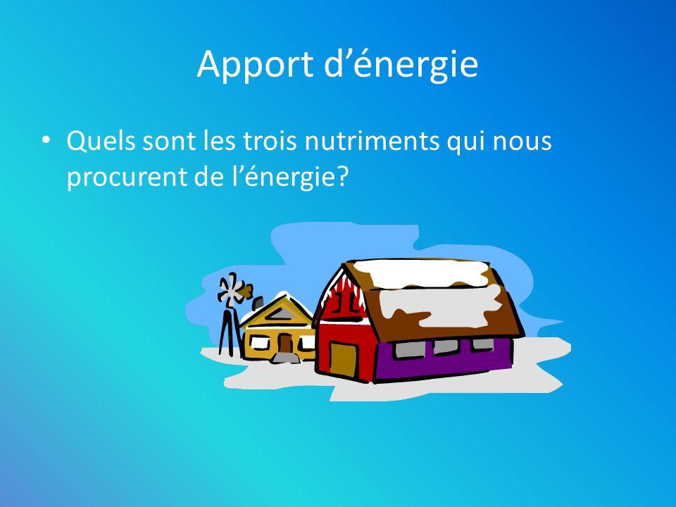 Apport dénergie Quels sont les trois nutriments qui nous procurent de lénergie? Les glucides Les protéines Les lipides
