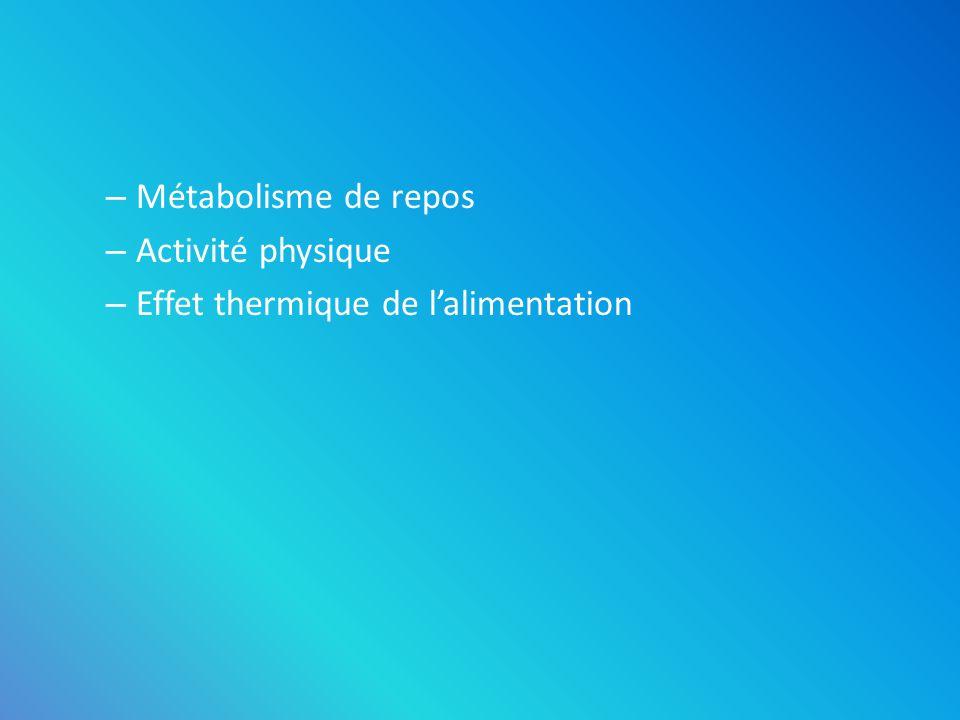 – Métabolisme de repos – Activité physique – Effet thermique de lalimentation