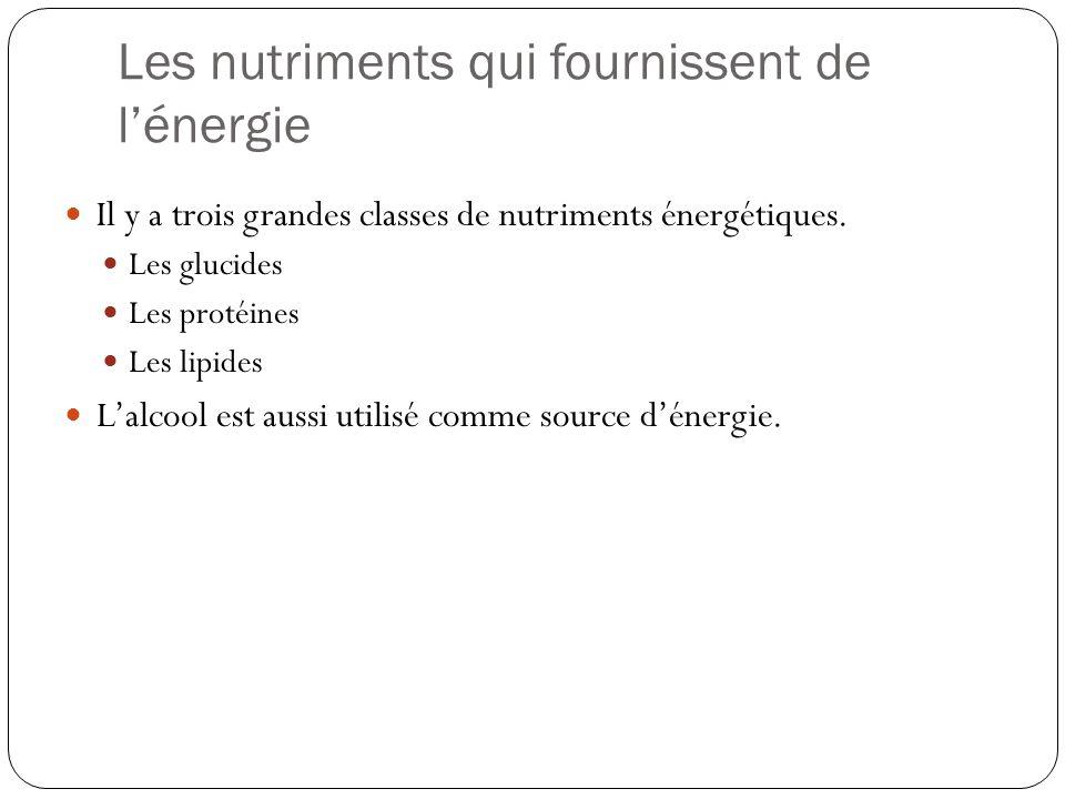 Les nutriments qui fournissent de lénergie Il y a trois grandes classes de nutriments énergétiques. Les glucides Les protéines Les lipides Lalcool est