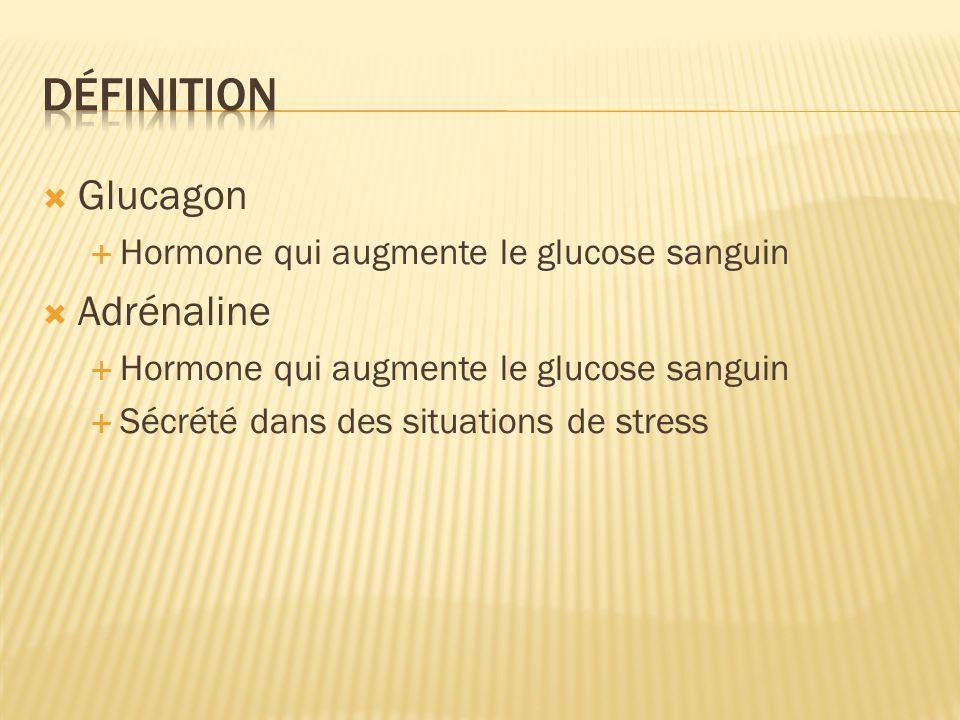 Glucagon Hormone qui augmente le glucose sanguin Adrénaline Hormone qui augmente le glucose sanguin Sécrété dans des situations de stress
