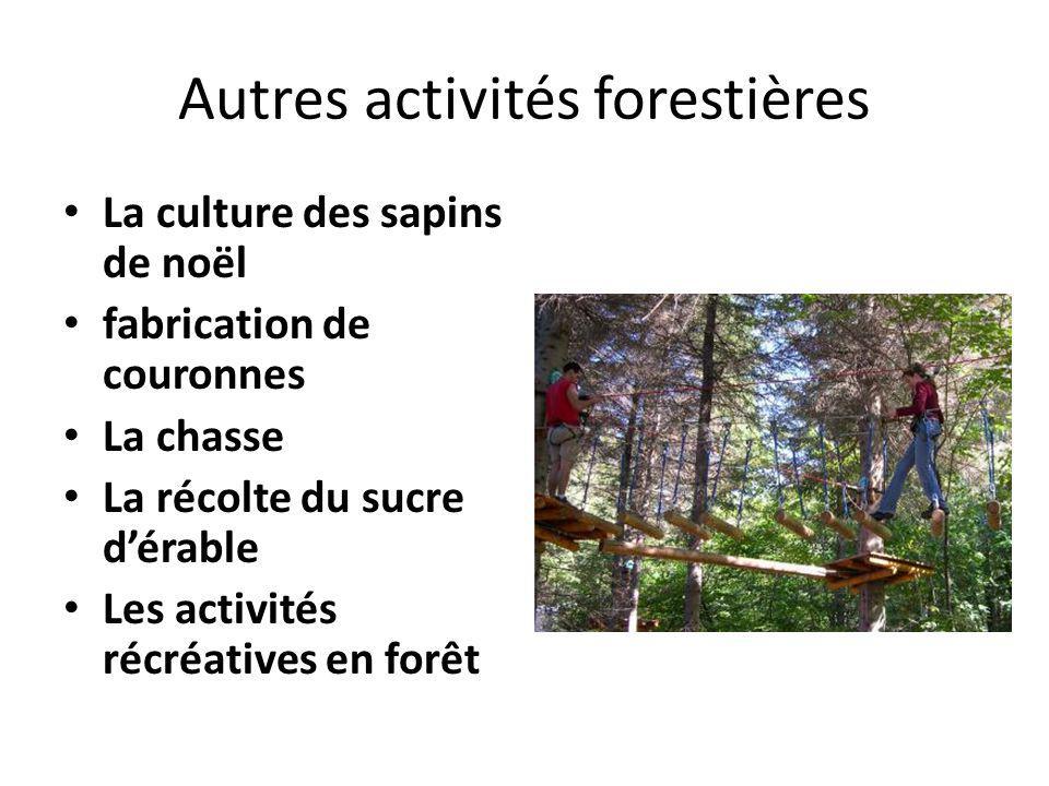 Autres activités forestières La culture des sapins de noël fabrication de couronnes La chasse La récolte du sucre dérable Les activités récréatives en
