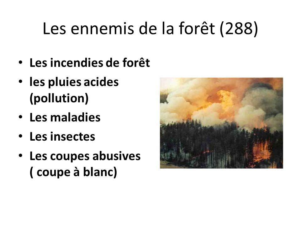 Les ennemis de la forêt (288) Les incendies de forêt les pluies acides (pollution) Les maladies Les insectes Les coupes abusives ( coupe à blanc)
