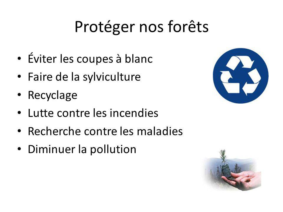 Protéger nos forêts Éviter les coupes à blanc Faire de la sylviculture Recyclage Lutte contre les incendies Recherche contre les maladies Diminuer la