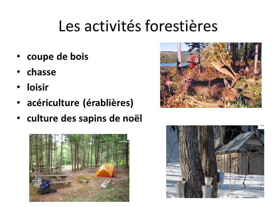 Les activités forestières coupe de bois chasse loisir acériculture (érablières) culture des sapins de noël