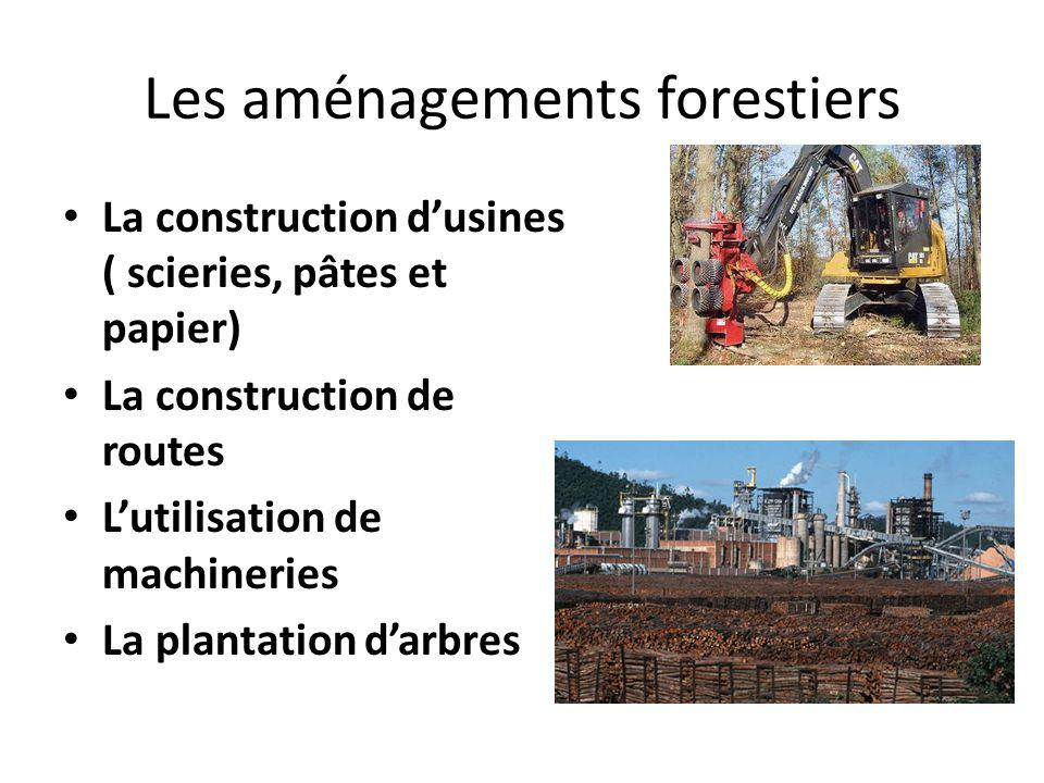 Les aménagements forestiers La construction dusines ( scieries, pâtes et papier) La construction de routes Lutilisation de machineries La plantation d