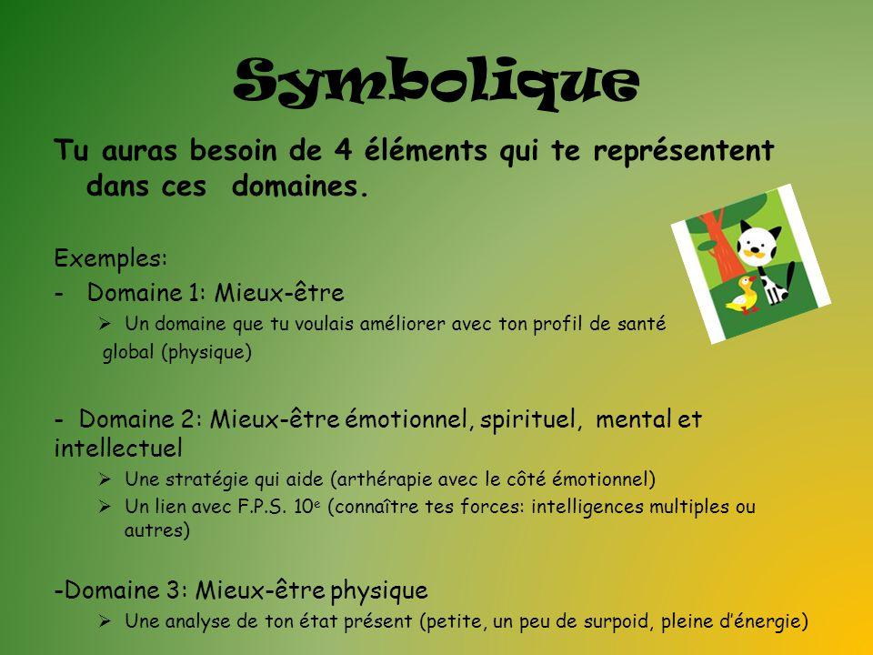 Symbolique Tu auras besoin de 4 éléments qui te représentent dans ces domaines. Exemples: -Domaine 1: Mieux-être Un domaine que tu voulais améliorer a