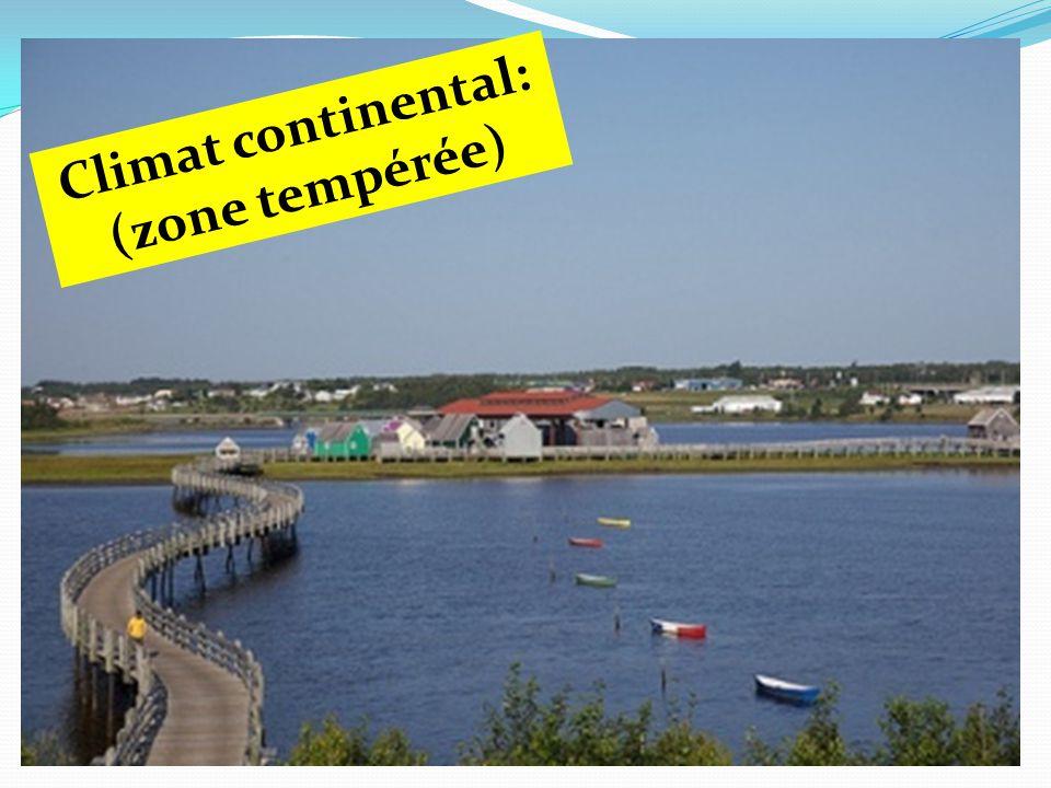 Climat continental: (zone tempérée)