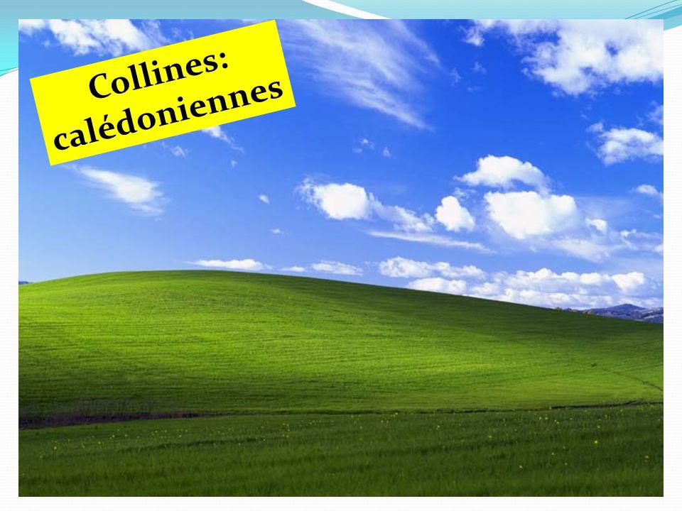 Collines: calédoniennes