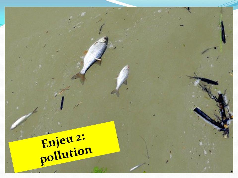 Enjeu 2: pollution