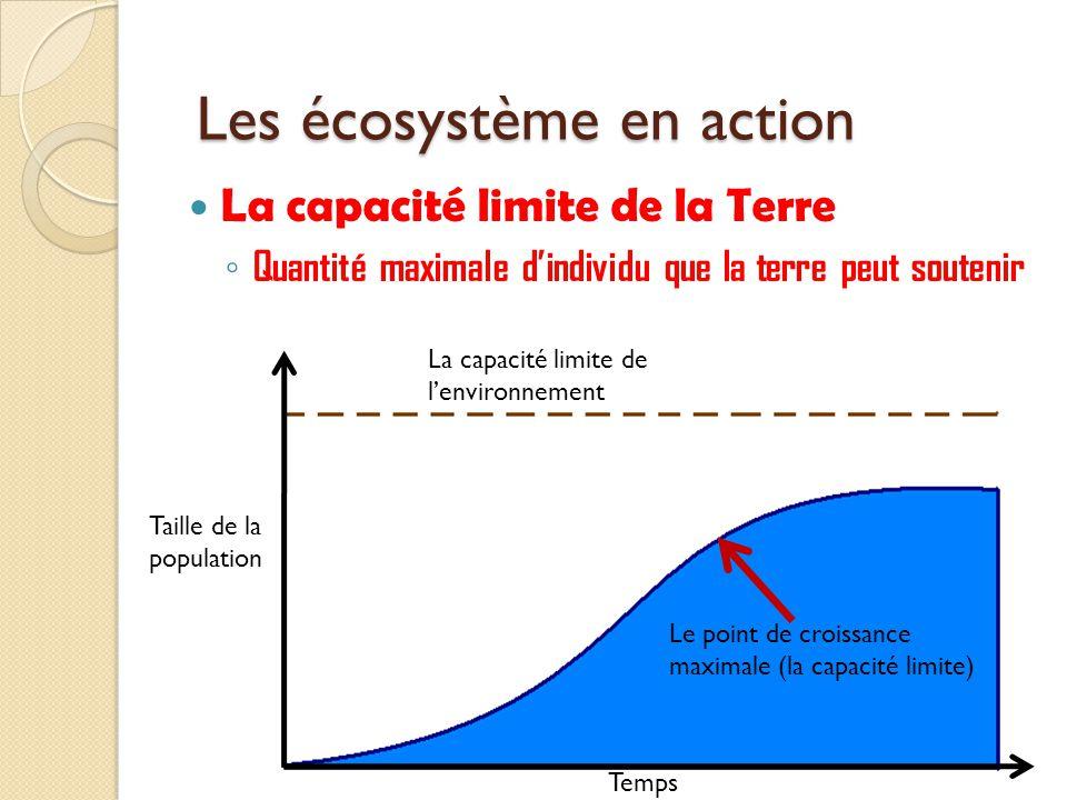 La capacité limite de la Terre Quantité maximale dindividu que la terre peut soutenir Les écosystème en action Taille de la population La capacité lim