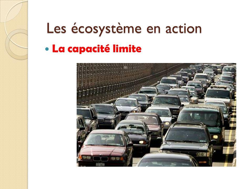 La capacité limite Les écosystème en action