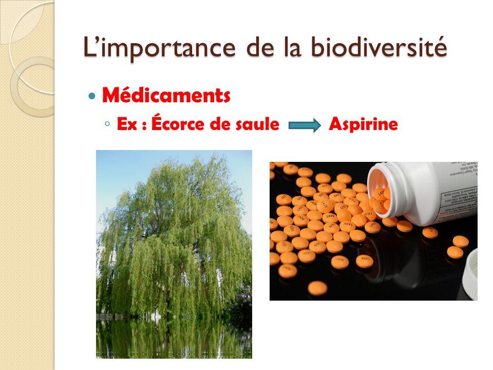 Médicaments Ex : Écorce de sauleAspirine